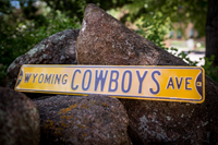 Wyoming Cowboys Ave Sign