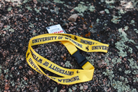R&D® Sublimated University Of Wyoming Lanyard