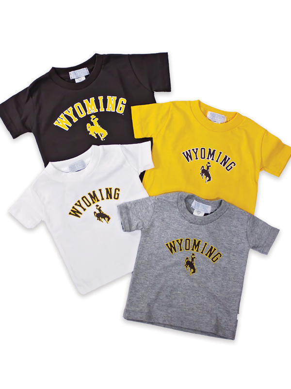 Wyoming Arch Basic Tee