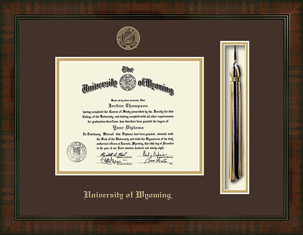 Church Hill Classics Tassel Edition Diploma Frame In Delta ...