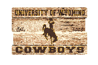 University Of Wyoming Plank Sign