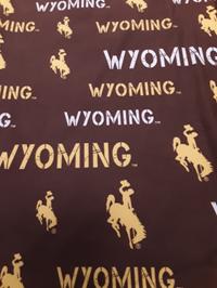 College Concepts® Wyoming Pajama Pants