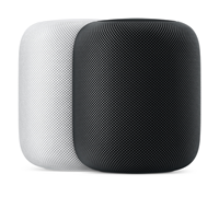Apple Homepod®
