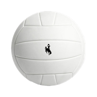 Full Size Bucking Horse Volleyball