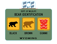 Blue 84® Bear Identification Sticker