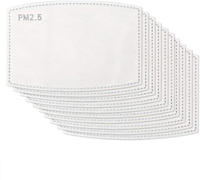PM2.5 Filter Replacements Pack of 10