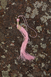 College Color Tassel 2021